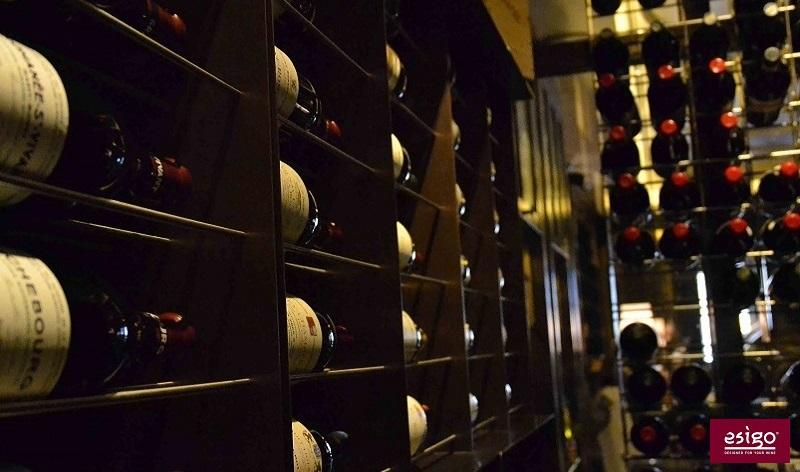 Esigo 2 Net metal modern wine rack