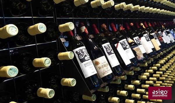 Esigo 2 Net metal wine rack wall