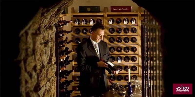 Professional wine cellar furniture